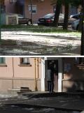Минск накрывает снегом из тополиного пуха