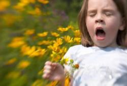 Труд, май… аллергия!