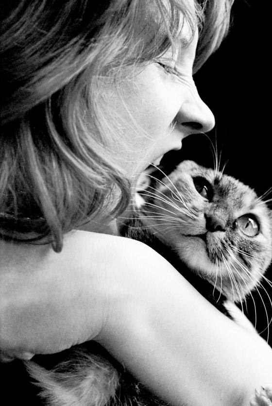 Съедобный кот