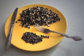 Полезно ли грызть семечки
