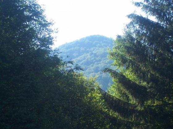 Гора виднеется вдали