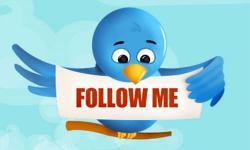 Продвижение сайта в Twitter через Total Twitter Control