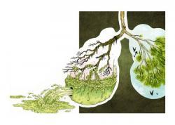 Что такое детоксикация организма?