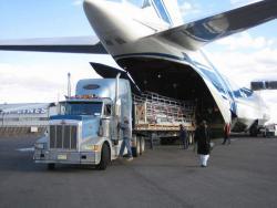 Как доставить груз из США?