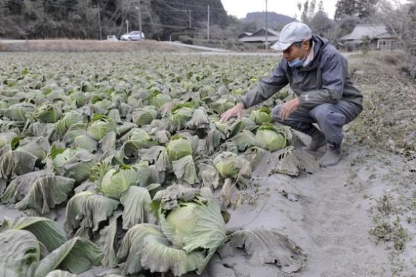 Последствия извержения вулкана в Японии