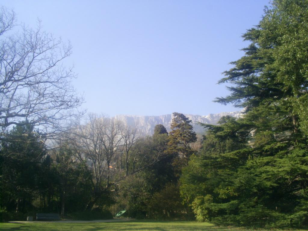 Ай-петри. Вид из алупинского парка.