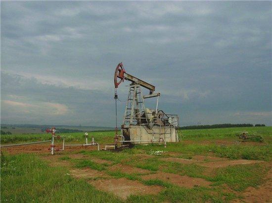 В Беларуси освоят месторождения Припятского прогиба